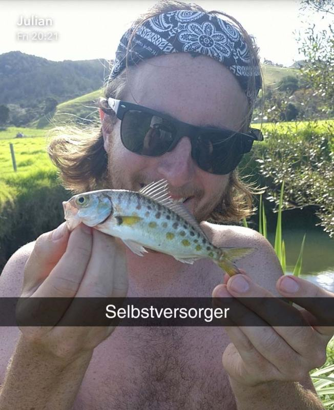 Caught fish in Coramandel, New Zealand