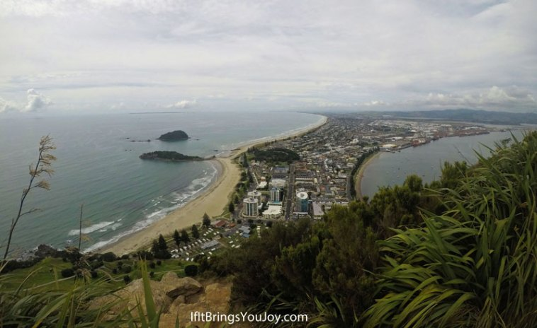 Eagle's view of Tauranga, New Zealand