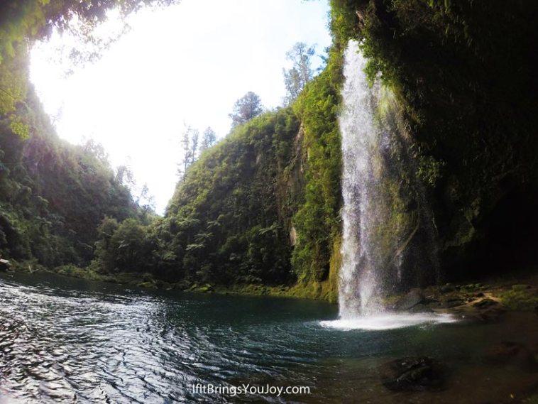 Omanawa Falls, hidden waterfall near Tauranga, New Zealand