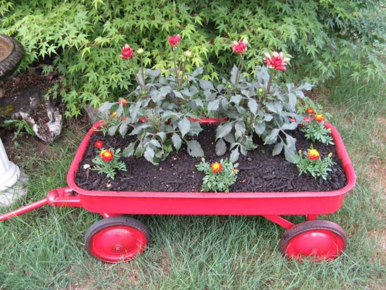 Flowers planted in an old red wagon