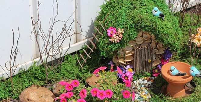 How to Start A Fairy Garden