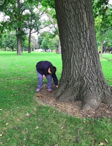 Boy hiding kindness rocks in a park.