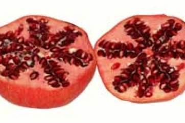 pomegranate juice recipes for diabetics