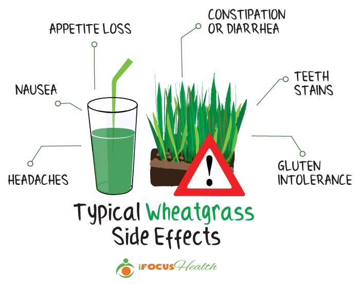 wheatgrass side effects
