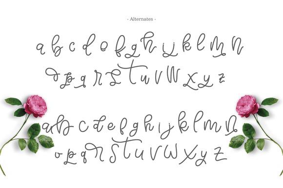 Bellinda Script