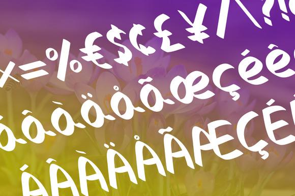 10 Fonts Bundle