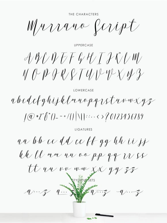 Murrano Script
