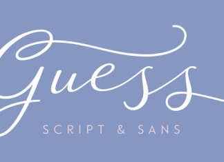 Guess Font Family