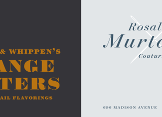 Surveyor Font Family