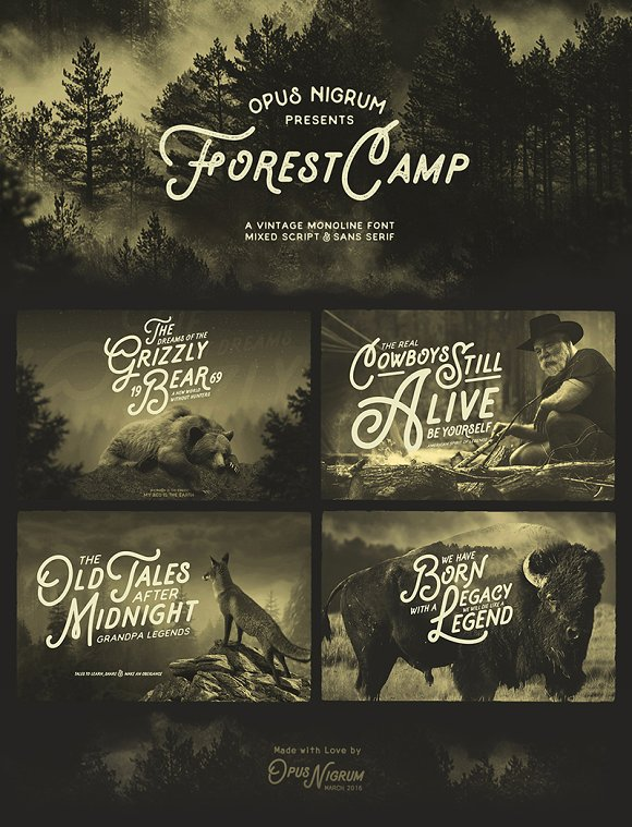 Forest Camp Font + Free Vector Pack