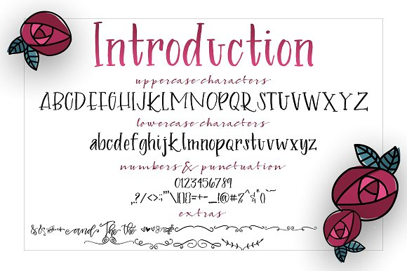 Introduction Brush Font with Extras