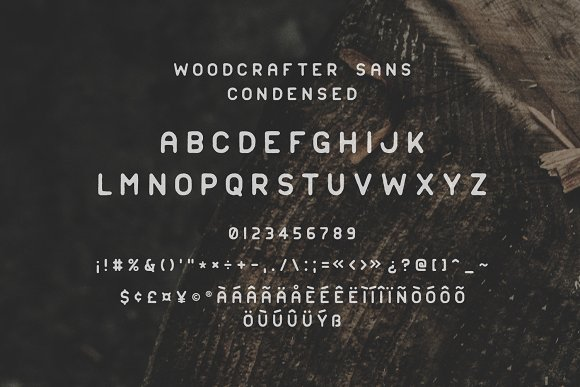 Woodcrafter Sans - 4 Font Family
