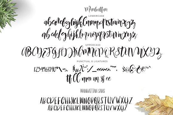 Manhattan Script (2 fonts)