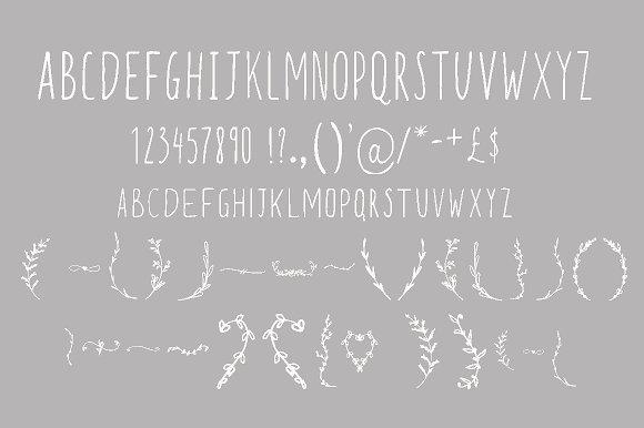 Starboy. Handwritten typeface
