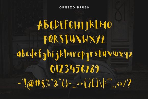 Ornexo + Extras + BIG Bonus