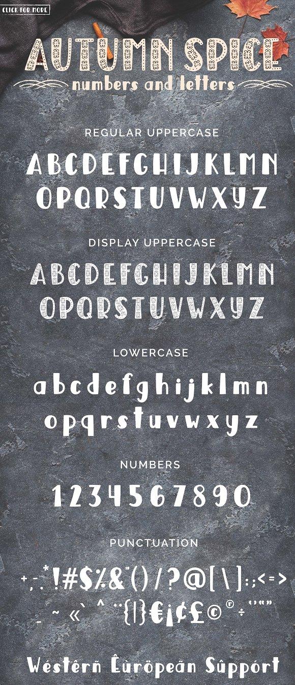 Autumn Spice Display San Serif Font