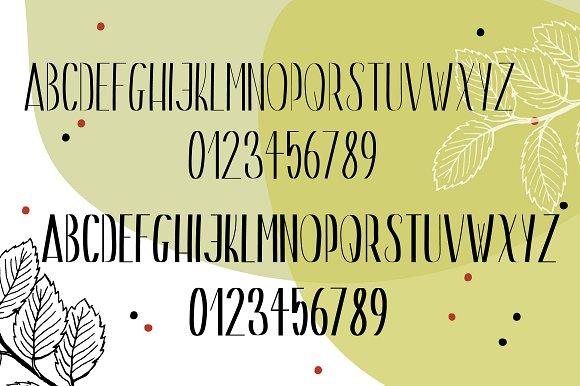 Gin & Tonic   Sans Serif Font Duo