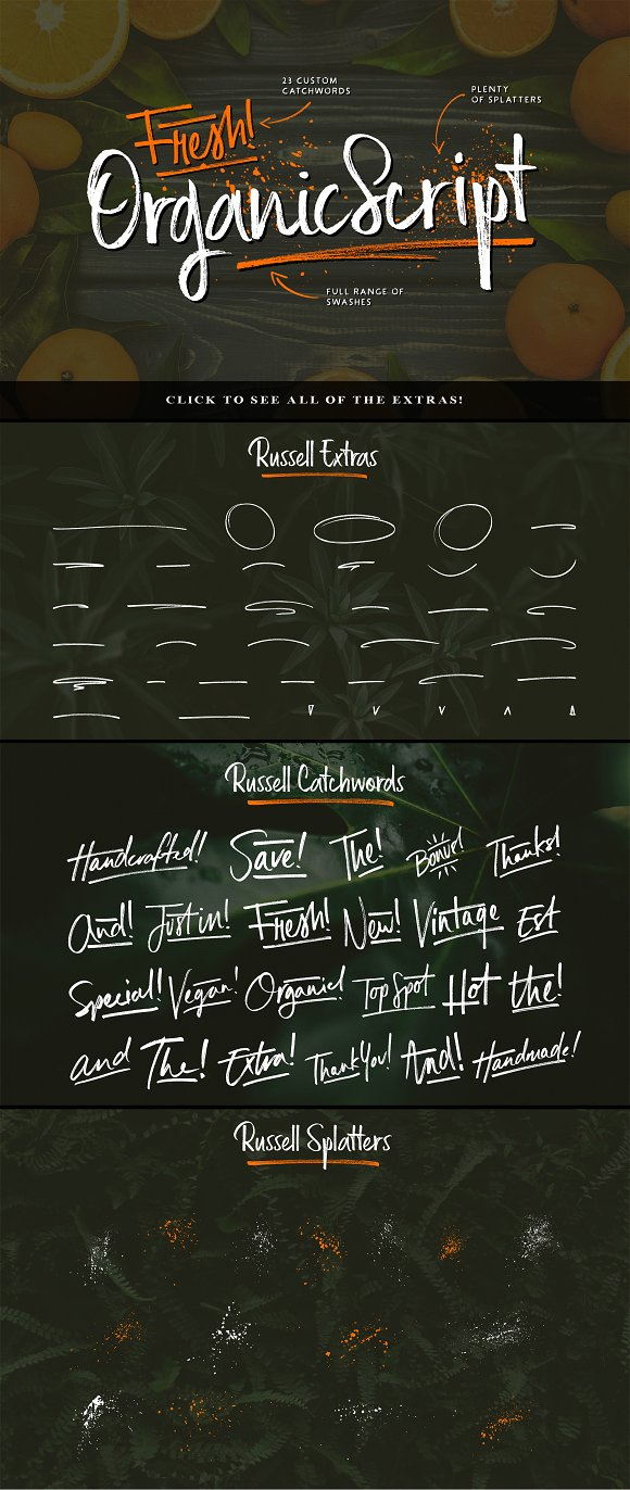 Russell Brush Script Font