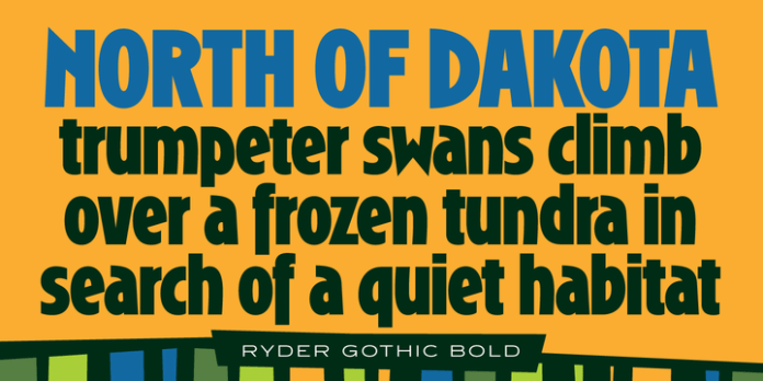 Ryder Gothic Pro Font Family