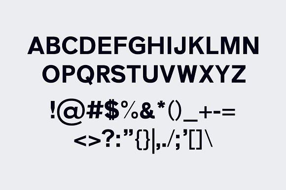 Zisel Sans 5 Fonts Family Set