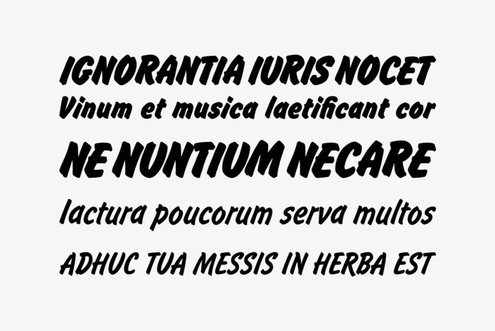 Flash Font Family