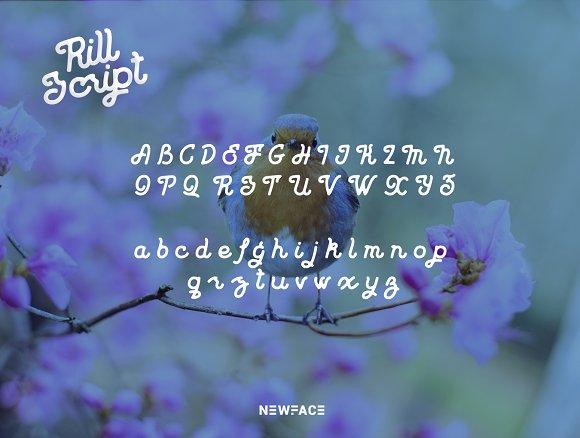 Rill Script