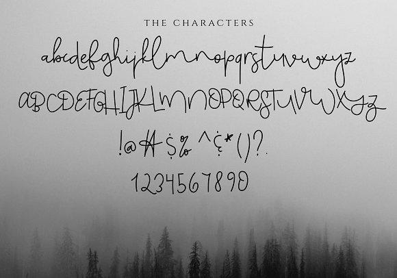 Monday Blues - Chic Handwritten Font