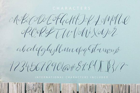 Route Nine Script Font