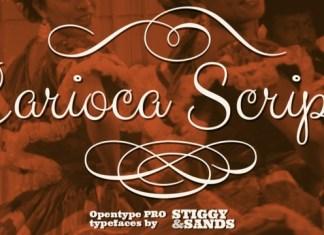 Carioca Script Pro Font Family