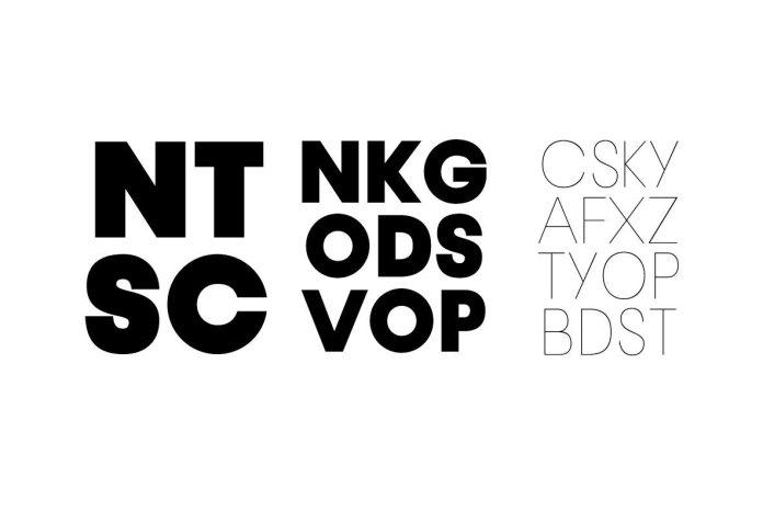 DN pro Font Family