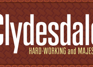 Clydesdale Font Family