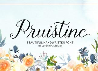 Fontbundles - Pruistine Script