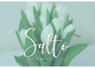 Fontbundles - Salto Font