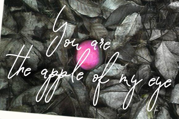 Script Font Pomme Noire