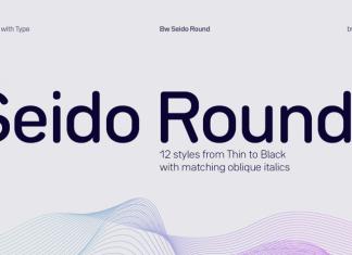 Bw Seido Round Font