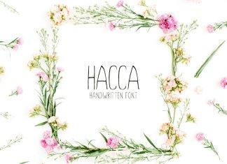 Hacca Handwritten Sans Serif Font