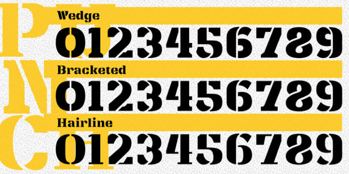 Punch Pro Font Family