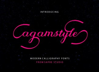 Agamstyle Script Font