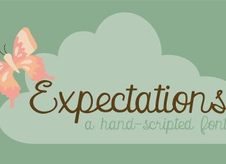 PN ExpectationsRegular Font