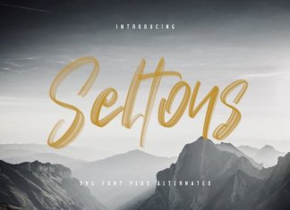 Seltons - SVG Font
