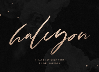 Halcyon Brush Lettered Font