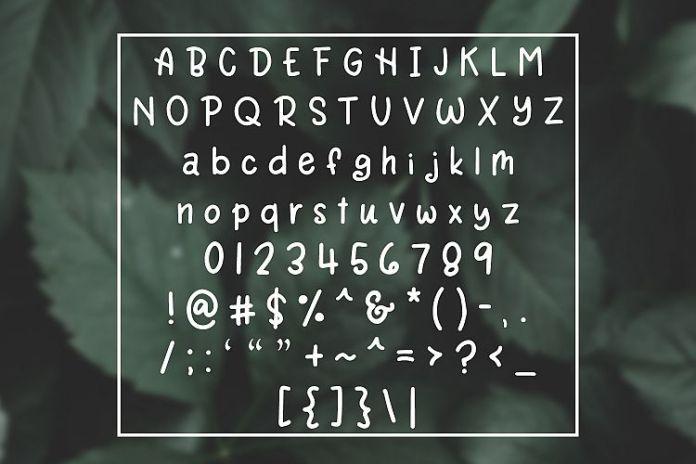 Rain Lily - Simple Monoline Handwritten Font