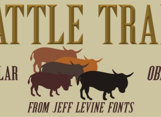 Cattle Trail JNL Font