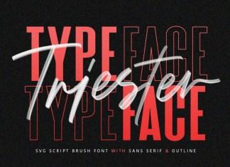 Triester SVG Brush Font Free Sans
