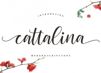Cattalina - Beauty Font