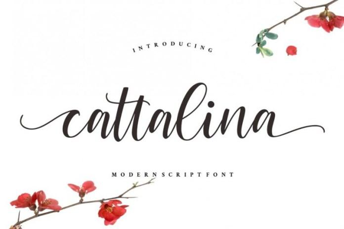 Cattalina - Beauty Font