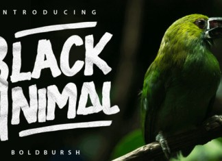 Black Animal Font Family