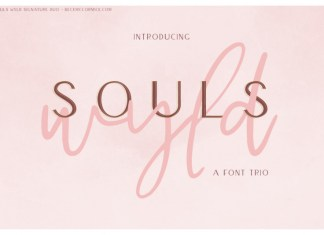 Souls Wyld Signature Font