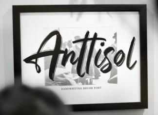 Anttisol Font