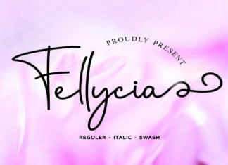 Fellicya Font